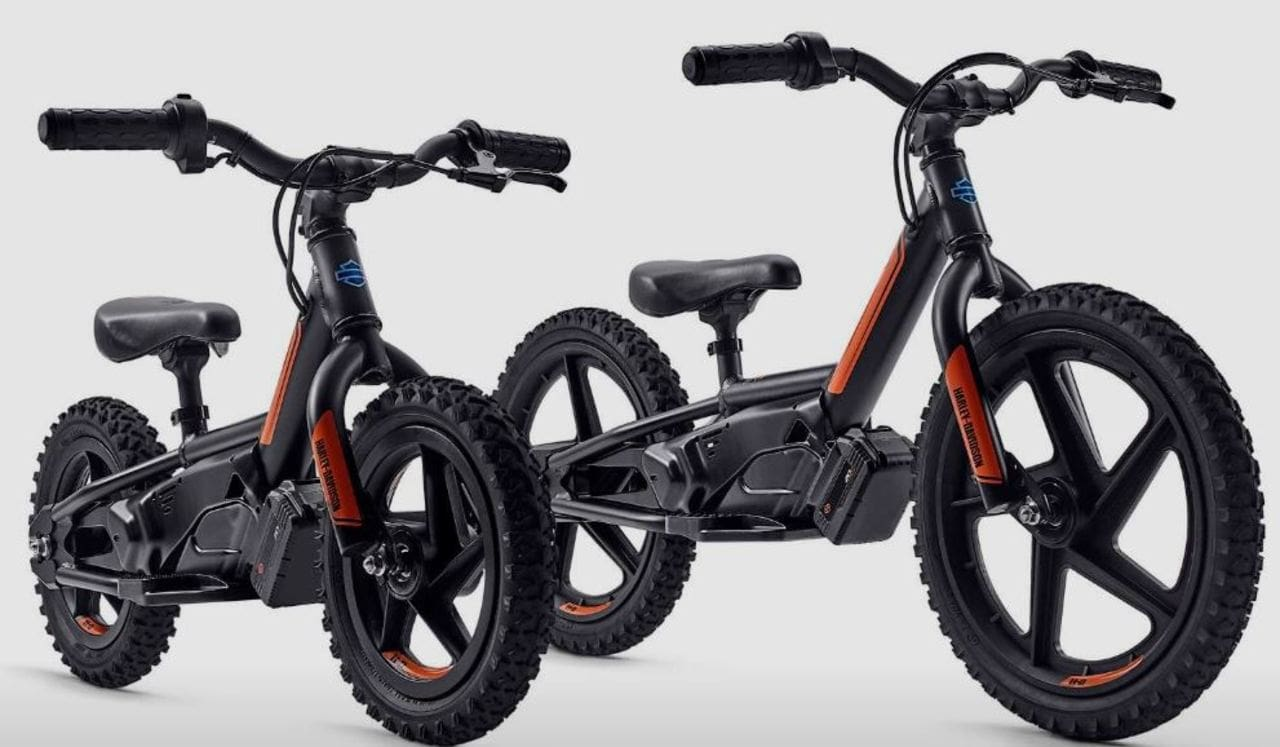 A Harley-Davidson for Your Kids--Why Not?