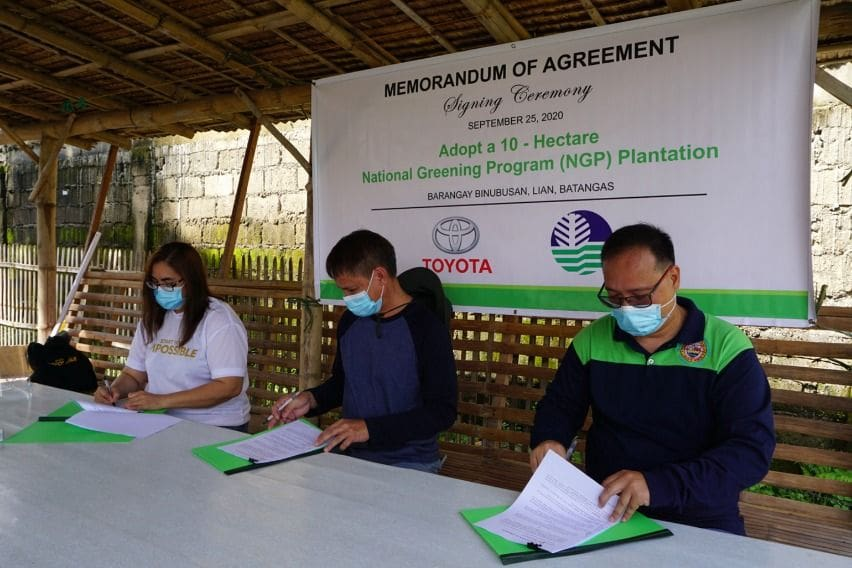 TMP mangrove rehab Batangas